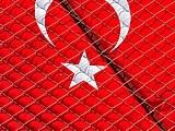 В России «обнулили» турецкий турбизнес: Пегас, Корал, Анекс, Санмар исключены из реестра туроператоров